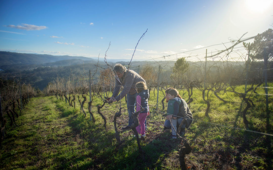 ABA SOLLEIRA, newcomers to a territory with millenary history, … RIBEIRA SACRA.